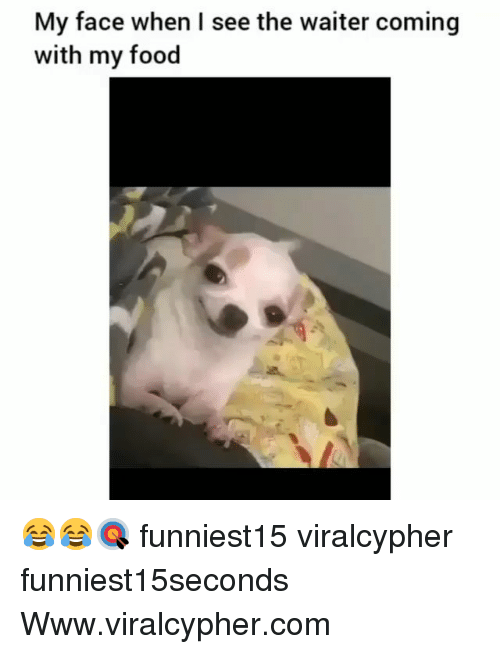 Food, Funny, and My Face When: My face when I see the waiter coming  with my food 😂😂🎯 funniest15 viralcypher funniest15seconds Www.viralcypher.com
