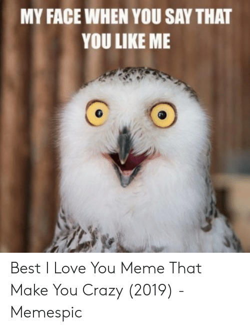 Crazy, Love, and Meme: MY FACE WHEN YOU SAY THAT  YOU LIKE ME Best I Love You Meme That Make You Crazy (2019) - Memespic