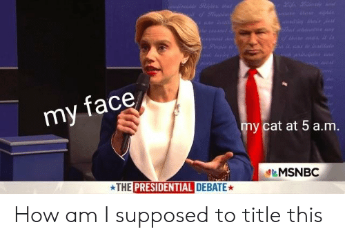 Presidential Debate: my face  y cat at 5 a.m  &MSNBC  THE PRESIDENTIAL DEBATE How am I supposed to title this