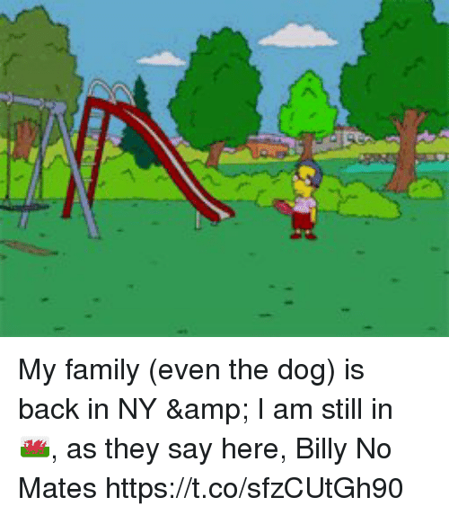 Family, Memes, and Back: My family (even the dog) is back in NY & I am still in 🏴,  as they say here, Billy No Mates https://t.co/sfzCUtGh90