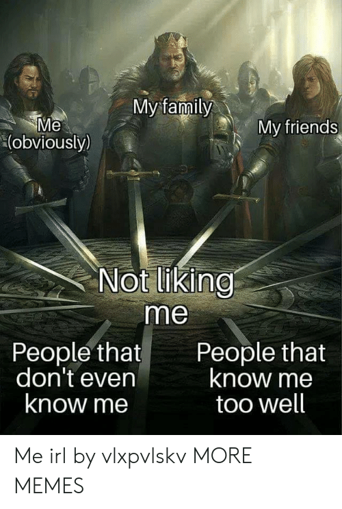 Dank, Family, and Friends: My family  Me  (obviously)  My friends  Not liking  me  People that  don't even  know me  People that  know me  too well Me irl by vlxpvlskv MORE MEMES