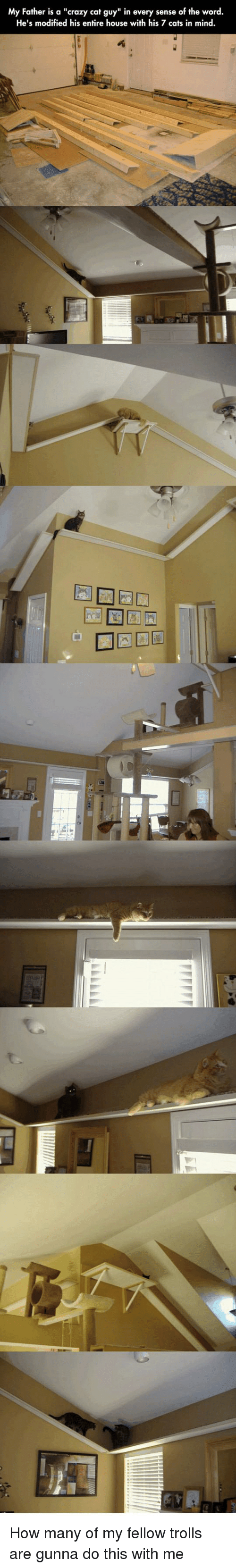 """trolls: My Father is a """"crazy cat guy"""" in every sense of the word.  He's modified his entire house with his 7 cats in mind How many of my fellow trolls are gunna do this with me"""