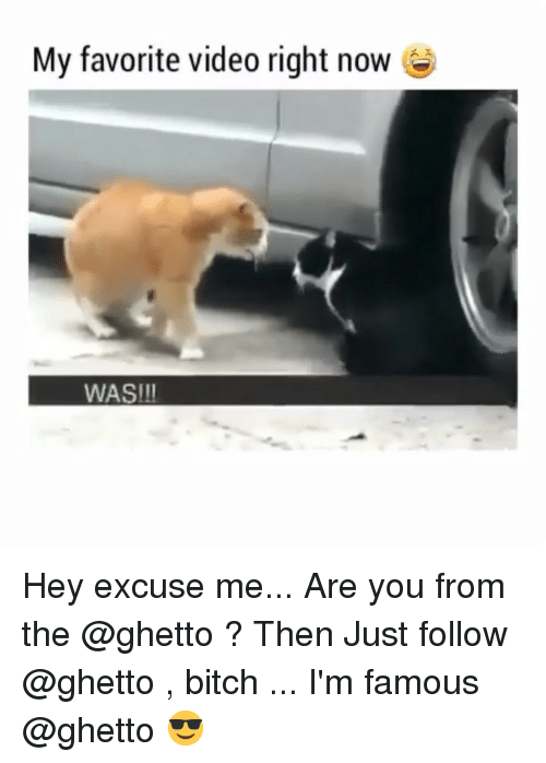 Bitch, Ghetto, and Memes: My favorite video right now  WAS!II Hey excuse me... Are you from the @ghetto ? Then Just follow @ghetto , bitch ... I'm famous @ghetto 😎