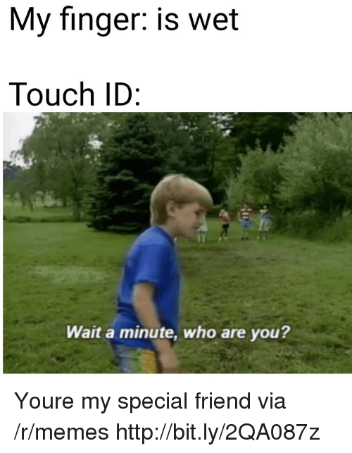Memes, Http, and Who: My finger: is wet  Touch ID  Wait a minute, who are you? Youre my special friend via /r/memes http://bit.ly/2QA087z
