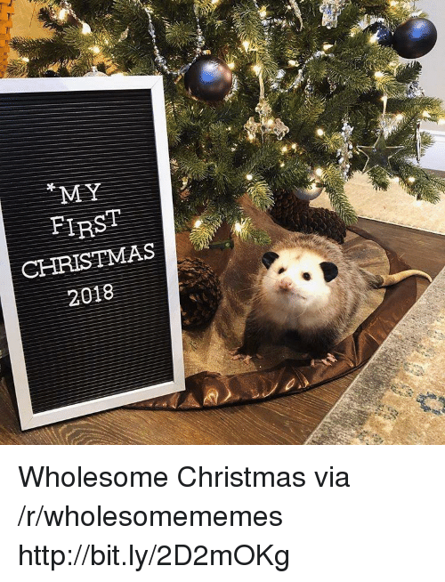 Christmas, Http, and Wholesome: MY  FIRST  CHRISTMAS  2018 Wholesome Christmas via /r/wholesomememes http://bit.ly/2D2mOKg