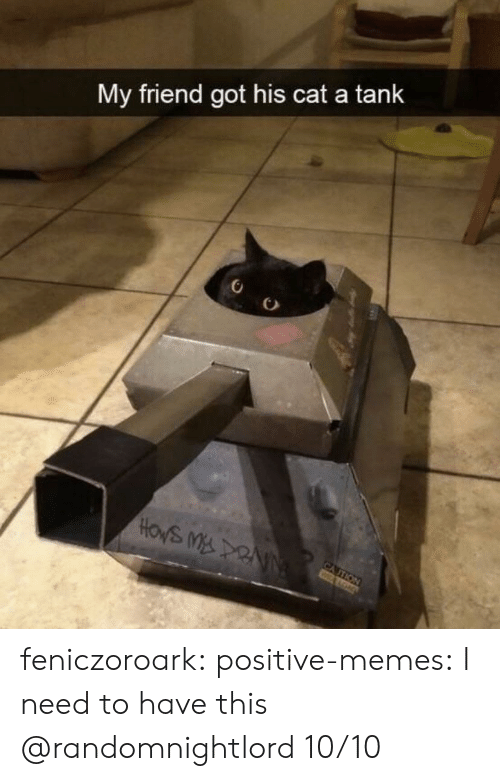 Memes, Tumblr, and Blog: My friend got his cat a tank  HOWS MDRNN  CA ITION feniczoroark:  positive-memes:  I need to have this  @randomnightlord   10/10