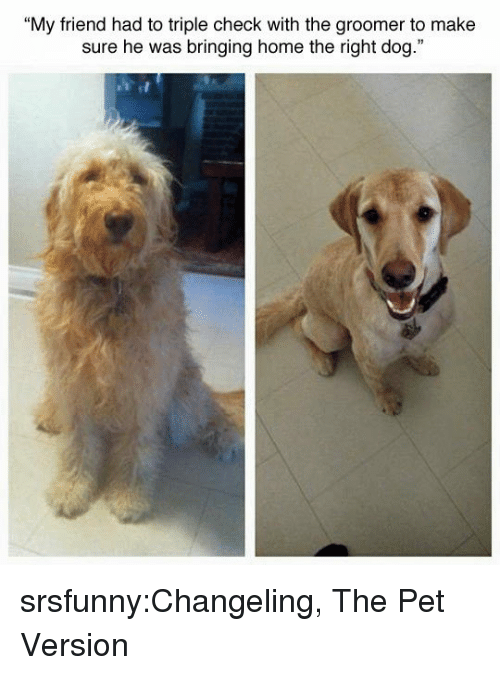 """Tumblr, Blog, and Home: """"My friend had to triple check with the groomer to make  sure he was bringing home the right dog."""" srsfunny:Changeling, The Pet Version"""
