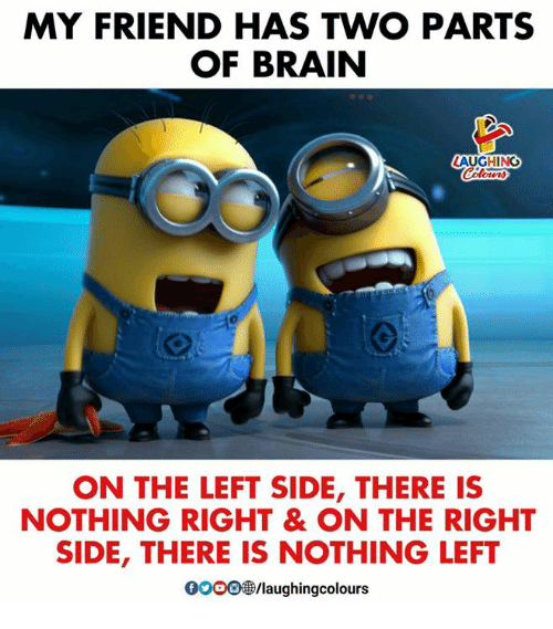 Gooo, Brain, and Indianpeoplefacebook: MY FRIEND HAS TWO PARTS  OF BRAIN  AUGHING  ON THE LEFT SIDE, THERE IS  NOTHING RIGHT & ON THE RIGHT  SIDE, THERE IS NOTHING LEFT  GOOO  /laughingcolours