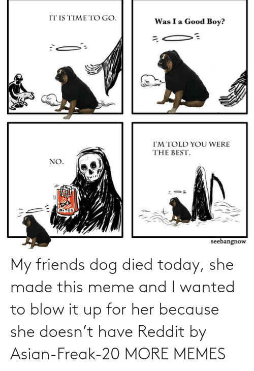 For Her: My friends dog died today, she made this meme and I wanted to blow it up for her because she doesn't have Reddit by Asian-Freak-20 MORE MEMES