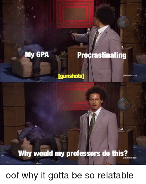 Relatable, Com, and Why: My GPAProcrastinating  Igunshots  fadultswim.com  Why would my professors do this?  adultswim.com <p>oof why it gotta be so relatable</p>