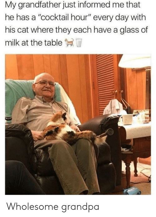 "Grandpa, Wholesome, and Cat: My grandfather just informed me that  he has a ""cocktail hour"" every day with  his cat where they each have a glass of  milk at the table T Wholesome grandpa"