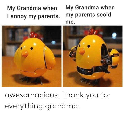 Grandma, Parents, and Tumblr: My Grandma when  My Grandma when  annoy my parents. my parents scold  me. awesomacious:  Thank you for everything grandma!