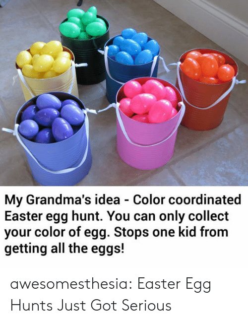 Easter, Tumblr, and Blog: My Grandma's idea Color coordinated  Easter egg hunt. You can only collect  your color of egg. Stops one kid from  getting all the eggs! awesomesthesia:  Easter Egg Hunts Just Got Serious