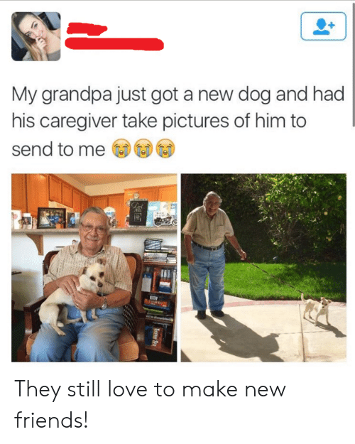 Caregiver: My grandpa just got a new dog and had  his caregiver take pictures of him to  send to me They still love to make new friends!