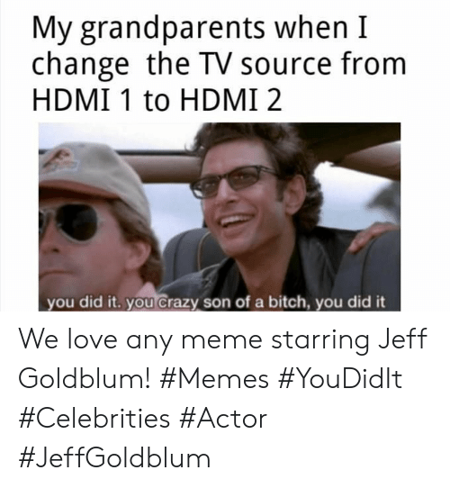 Celebrities: My grandparents when I  change the TV source from  HDMI 1 to HDMI 2  you did it. you crazy son of a bitch, you did it We love any meme starring Jeff Goldblum! #Memes #YouDidIt #Celebrities #Actor #JeffGoldblum