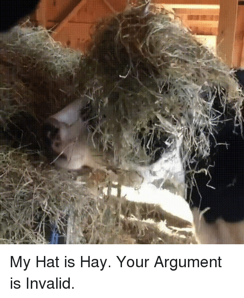 Argument Is Invalid, Hay, and Hat: My Hat is Hay. Your Argument is Invalid.