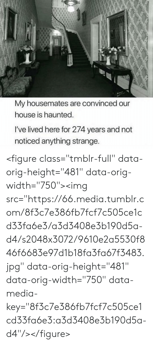 """haunted: My housemates are convinced our  house is haunted.  I've lived here for 274 years and not  noticed anything strange. <figure class=""""tmblr-full"""" data-orig-height=""""481"""" data-orig-width=""""750""""><img src=""""https://66.media.tumblr.com/8f3c7e386fb7fcf7c505ce1cd33fa6e3/a3d3408e3b190d5a-d4/s2048x3072/9610e2a5530f846f6683e97d1b18fa3fa67f3483.jpg"""" data-orig-height=""""481"""" data-orig-width=""""750"""" data-media-key=""""8f3c7e386fb7fcf7c505ce1cd33fa6e3:a3d3408e3b190d5a-d4""""/></figure>"""