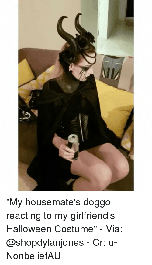 "Halloween, Memes, and Girlfriends: ""My housemate's doggo reacting to my girlfriend's Halloween Costume"" - Via: @shopdylanjones - Cr: u-NonbeliefAU"