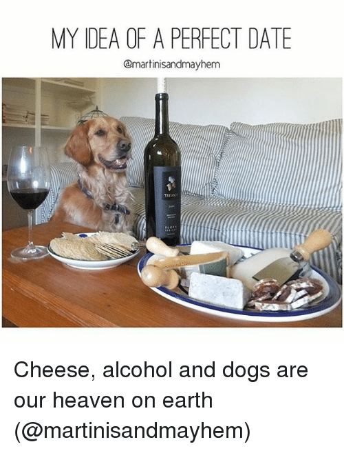 my idea of a perfect date qmartinisandmayhem cheese alcohol and 2548622 🦅 25 best memes about my idea of a perfect date my idea of a