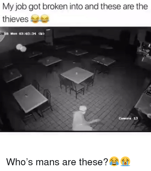 Funny, Got, and Job: My job got broken into and these are the  thieves a  20  B Mon 03:03:34 (  Canera 13 Who's mans are these?😂😭