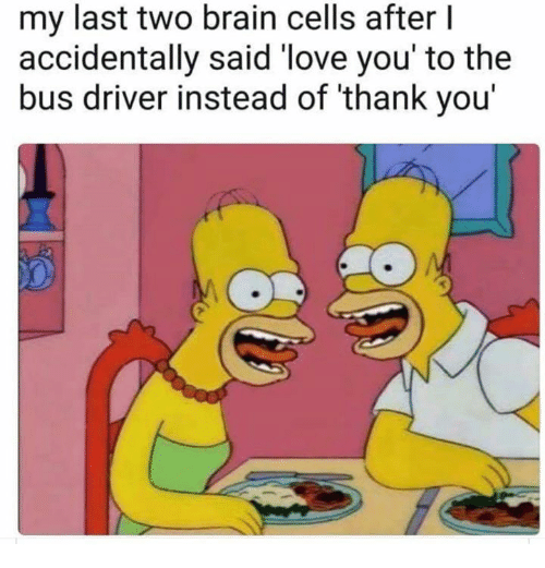 Love, Thank You, and Brain: my last two brain cells after I  accidentally said 'love you' to the  bus driver instead of thank you'
