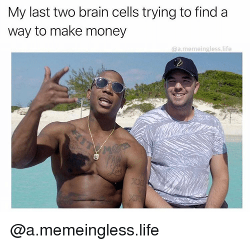 Life, Money, and Brain: My last two brain cells trying to find a  way to make money  @a.memeingless.life @a.memeingless.life