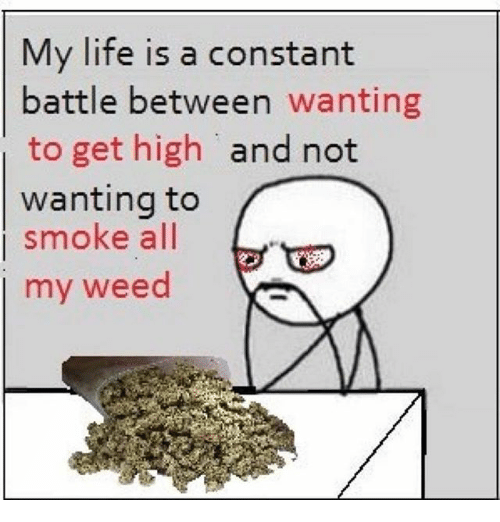Life, Memes, and Weed: My life is a constant  battle between wanting  to get high and not  wanting to  smoke all  my weed