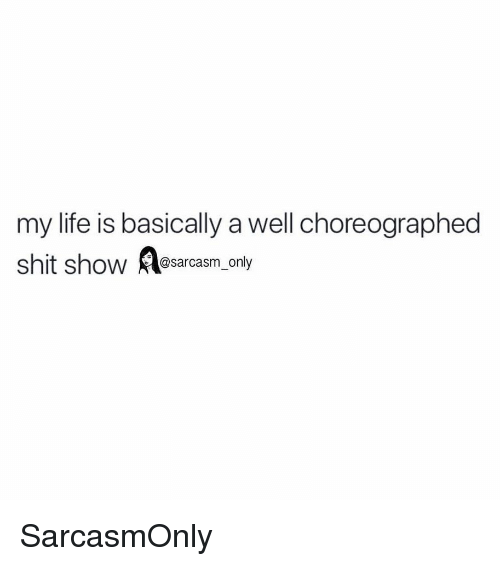 Funny, Life, and Memes: my life is basically a well choreographed  shit show asarcasm only SarcasmOnly