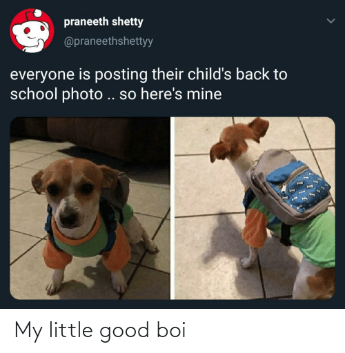 boi: My little good boi