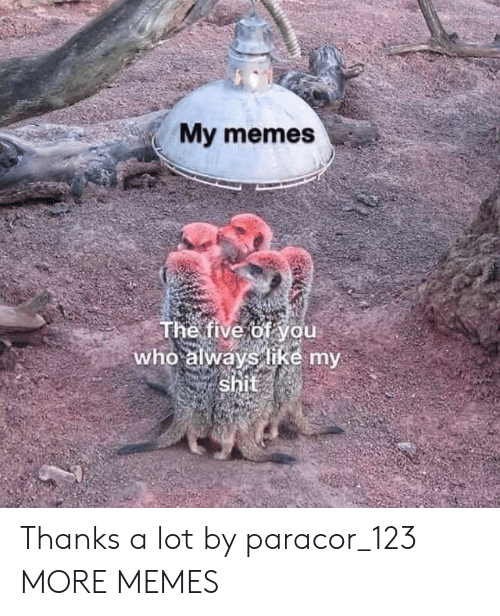 Dank, Memes, and Shit: My memes  The five of you  who always like my  shit Thanks a lot by paracor_123 MORE MEMES