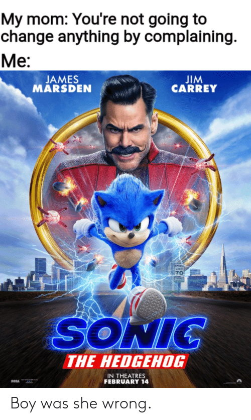 Jim Carrey, Sonic the Hedgehog, and Hedgehog: My mom: You're not going to  change anything by complaining  Ме:  JIM  CARREY  JAMES  MARSDEN  PEE  70  SONIC  THE HEDGEHOG  IN THEATRES  FEBRUARY 14 Boy was she wrong.