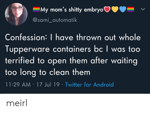Android, Moms, and Twitter: My mom's shitty embryo  @sami_automatik  Confession: | have thrown out whole  Tupperware containers bc I was too  terrified to open them after waiting  too long to clean them  11:29 AM 17 Jul 19 Twitter for Android meirl
