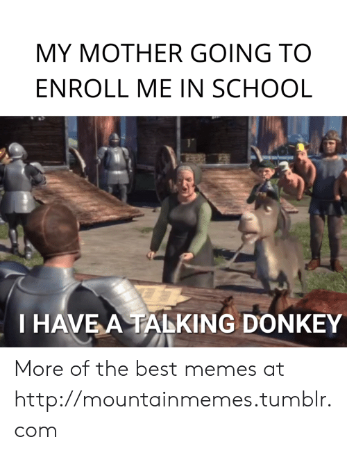 Donkey: MY MOTHER GOING TO  ENROLL ME IN SCHOOL  T HAVE A TALKING DONKEY More of the best memes at http://mountainmemes.tumblr.com