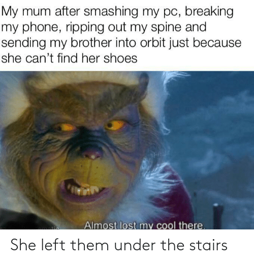 my brother: My mum after smashing my pc, breaking  my phone, ripping out my spine and  sending my brother into orbit just because  she can't find her shoes  Almost lost my cool there.  tic She left them under the stairs