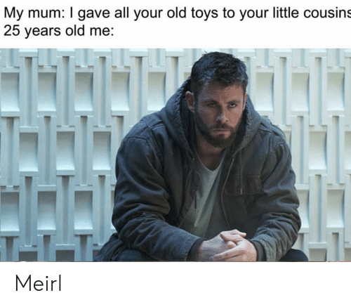 Your Old: My mum: I gave all your old toys to your little cousins  25 years old me:  T11 Meirl
