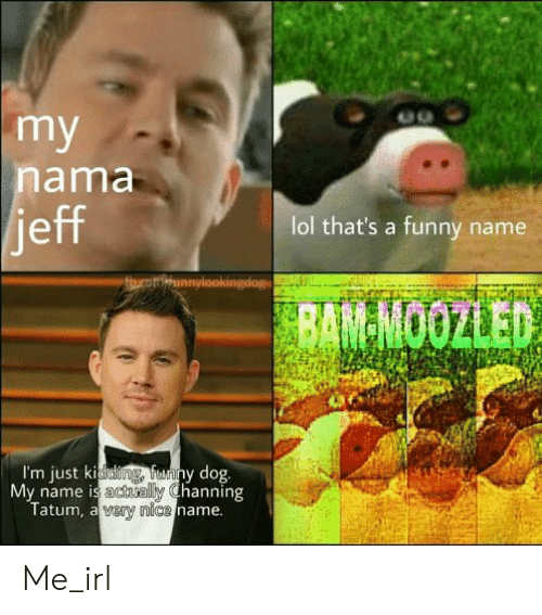 Funny Name: my  nama  jeff  lol that's a funny name  theomiunnylookingdog  BAM-MOOZLED  I'm just kiddling fenny dog  My name is actually Channing  Tatum, a vary nice name. Me_irl