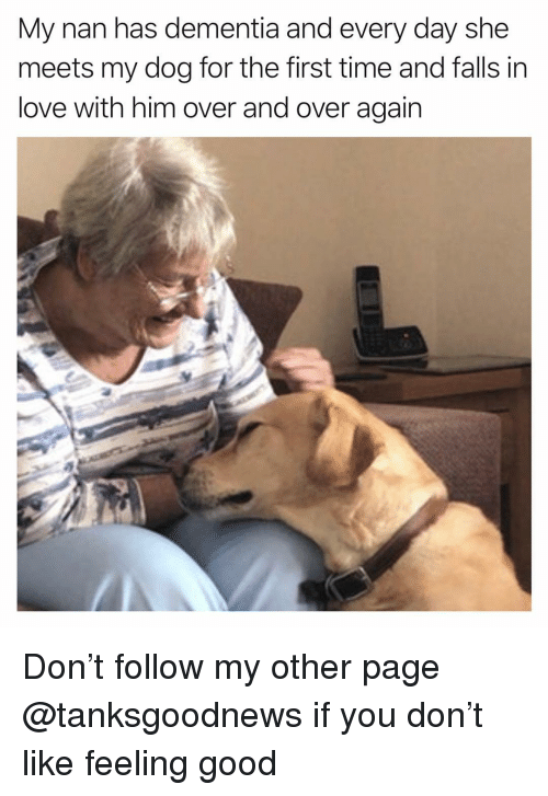Funny, Love, and Dementia: My nan has dementia and every day she  meets my dog for the first time and falls in  love with him over and over again Don't follow my other page @tanksgoodnews if you don't like feeling good