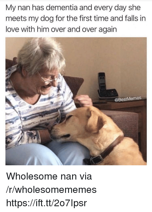 Love, Dementia, and Time: My nan has dementia and every day she  meets my dog for the first time and falls in  love with him over and over again  @BestMemes Wholesome nan via /r/wholesomememes https://ift.tt/2o7Ipsr