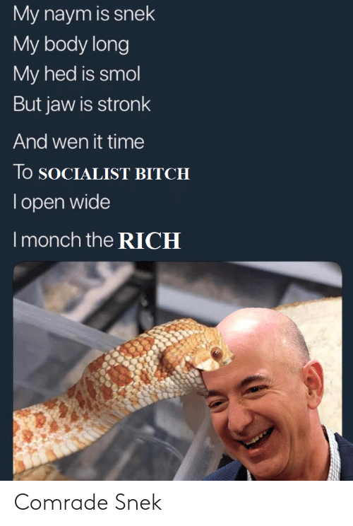my body: My naym is snek  My body long  My hed is smol  But jaw is stronk  And wen it time  lo SOCIALIST BITCH  Topen wide  I monch the RICH Comrade Snek
