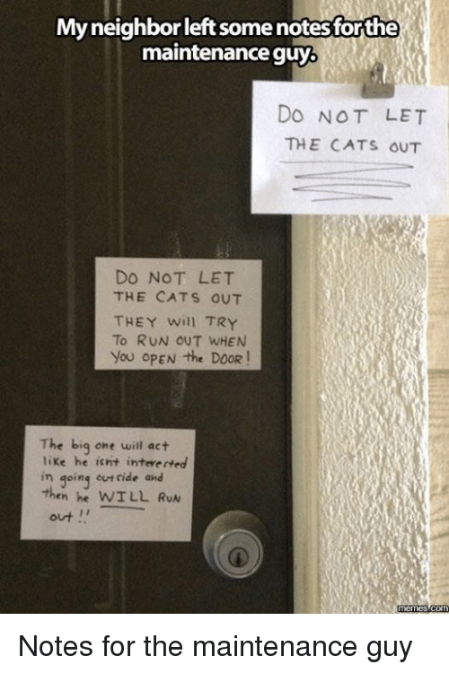 the big one: My neighbor leftsomenotesforthe  maintenance guy  DO NOT LET  THE CATS OUT  DO NOT LET  THE CATS OUT  THEY will TRY  To RUN OUT WHEN  you OPEN the DOOR  The big one will act  like he isnt inteverted  in going ride and  WILL RUN  out  memes com Notes for the maintenance guy