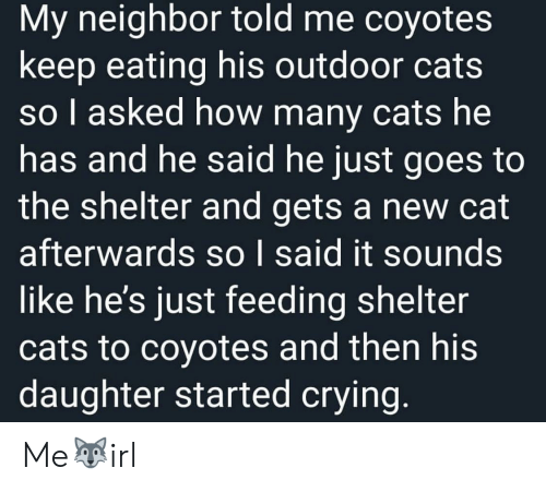 Cats, Crying, and How: My neighbor told me coyotes  keep eating his outdoor cats  so I asked how many cats he  has and he said he just goes to  the shelter and gets a new cat  afterwards so I said it sounds  like he's just feeding shelter  cats to coyotes and then his  daughter started crying. Me🐺irl