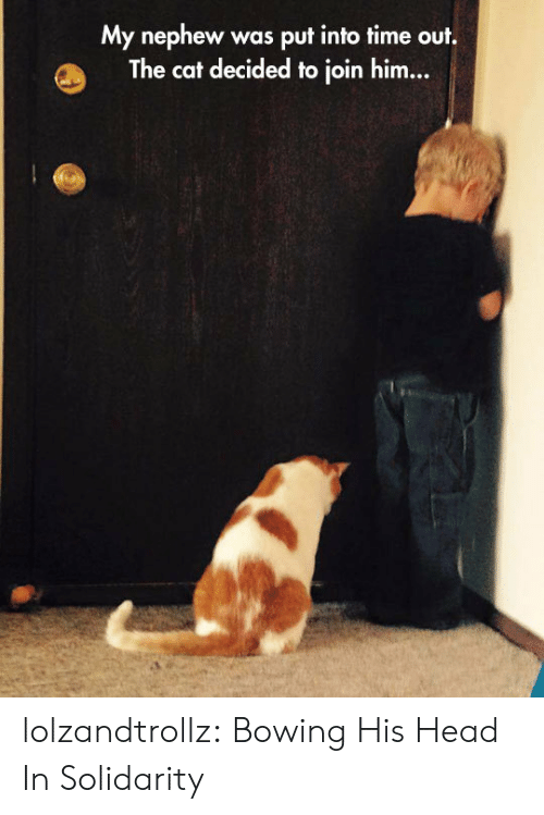 Head, Tumblr, and Blog: My nephew  The cat decided to join him...  was put into time out. lolzandtrollz:  Bowing His Head In Solidarity