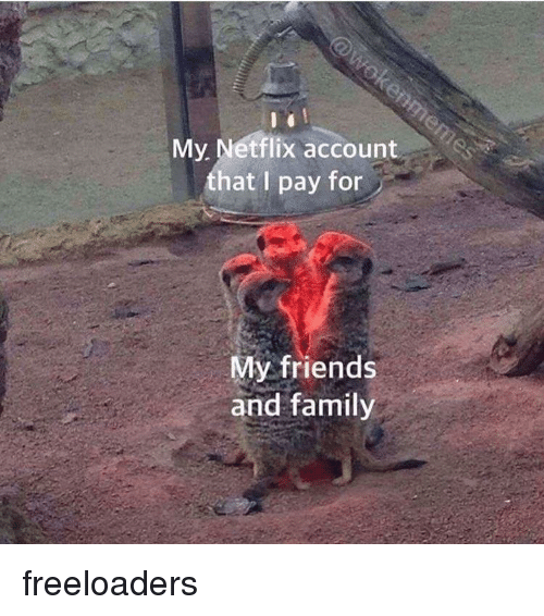 fon: My. Netflix account  that I pay fon  My friends  and family freeloaders