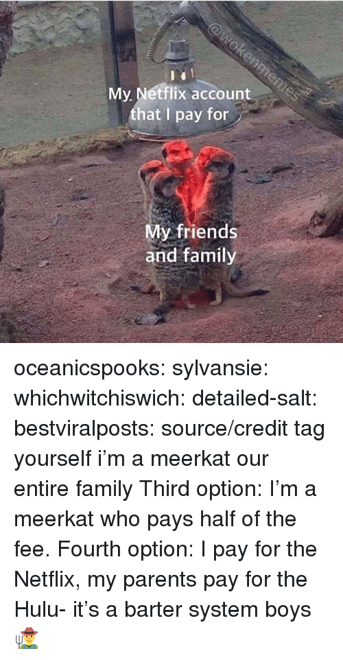 Family, Friends, and Hulu: My Netflix account  that I pay for  My friends  and family oceanicspooks:  sylvansie:  whichwitchiswich:  detailed-salt:  bestviralposts: source/credit tag yourself i'm a meerkat   our entire family   Third option: I'm a meerkat who pays half of the fee.   Fourth option: I pay for the Netflix, my parents pay for the Hulu- it's a barter system boys 👨‍🌾