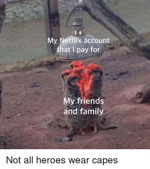 Family, Friends, and Netflix: My. Netflix account  that I pay for  My friends  and family Not all heroes wear capes