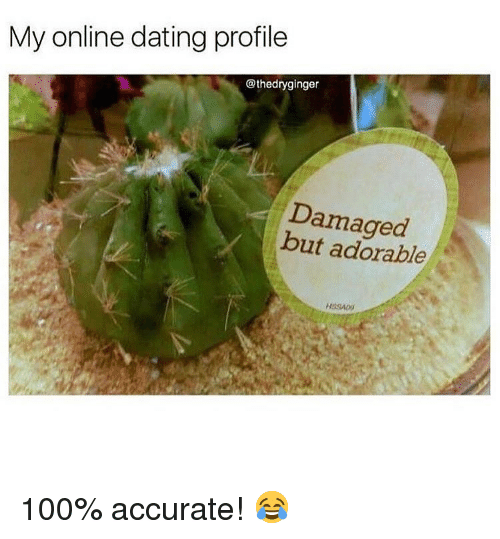 Anaconda, Dating, and Memes: My online dating profile  @thedryginger  Damaged  but adorable 100% accurate! 😂