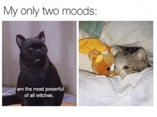 Humans of Tumblr, Powerful, and Witches: My only two moods:  am the most powerful  of all witches.