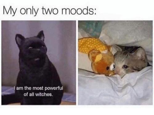 Powerful, Witches, and All: My only two moods:  am the most powerful  of all witches.