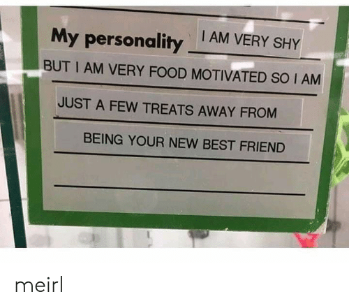 Best Friend, Food, and Best: My personality AM VERY SHY  BUT I AM VERY FOOD MOTIVATED SO I AM  JUST A FEW TREATS AWAY FROM  BEING YOUR NEW BEST FRIEND meirl