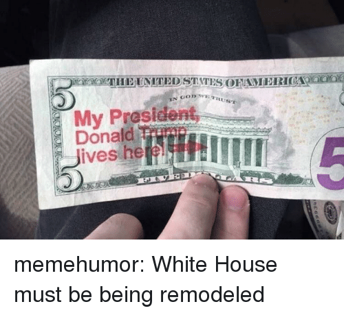 Tumblr, White House, and Blog: My President  Donald  Thme memehumor:  White House must be being remodeled